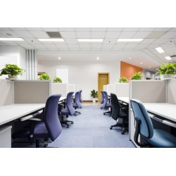 Office (Purchase)